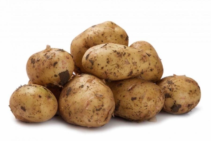 Купить картофель в Белово