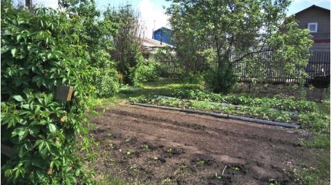 """Продам сад в """"Приморье"""", п.Инской"""